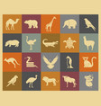 wild animals icons set vector image vector image