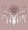 a deer skull with antlers dreamcatcher and feat vector image vector image