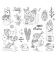 christmas cute forest animals fox owl raccoon bear vector image vector image