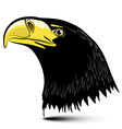 Eagle Head Isolated on White Background vector image vector image
