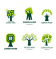 forest or woodland isolated icon tree ecology vector image
