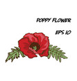 hand-drawn of red poppy flower vector image vector image
