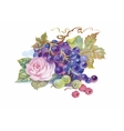 Hand drawn watercolor painting of grape and flower vector image vector image