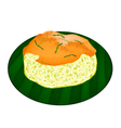 Sticky Rice with Fried Shrimp and Shred Coconut vector image vector image