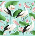 tropical exotic print pelicans image vector image vector image