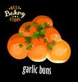bakery shop garlic buns vector image