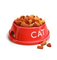 bowl with cat feed vector image vector image