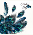 fashion background with blue feathers vector image vector image