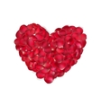 Heart of red rose petals isolated EPS 10 vector image