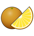 Orange fruit isolated on white background vector image vector image