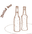 pencil hand drawn pair beer bottle vector image vector image