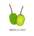 ambarella fruit flat vector image vector image