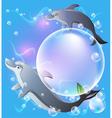 Dolphins fantasy vector image vector image