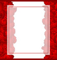 red carnation flower banner card border vector image vector image