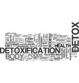 why detox is so vital text word cloud concept vector image vector image
