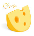 a large piece of cheese vector image