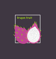 hand drawing dragon fruit with slice on dark vector image vector image
