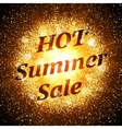 Hot summer sale banner Abstract explosion vector image