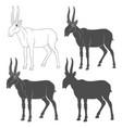 set depicting a saiga antelope vector image