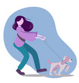 with woman walking the dog vector image vector image