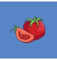 Cartoon style tomato vector image vector image