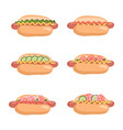hot dogs set with ready-to-eat snacks vector image