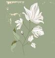 magnolia flower tree branch hand drawn vector image vector image