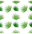 palm leaf pattern seamless background tile vector image