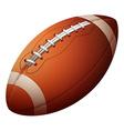USA football vector image vector image