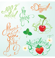 calligraphy fruits 380 vector image vector image