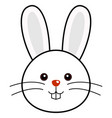cute rabbit cute animal faces vector image vector image