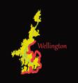 detailed flat map of wellington new zealand vector image vector image