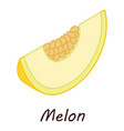 melon icon isometric style vector image vector image