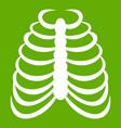 rib cage icon green vector image vector image