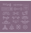 Beauty Industry Lettering and Curls Set vector image