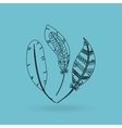 boho style design vector image vector image