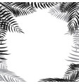 palm leaf border vector image vector image