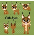 Set of emotions little lynx on a green background vector image vector image