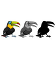 set of toucan character vector image vector image