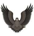 Eagle on a White Background vector image
