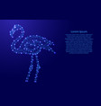 flamingo from futuristic polygonal blue lines and vector image
