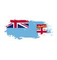 grunge brush stroke with fiji national flag vector image vector image
