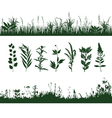 silhouettes grass vector image vector image