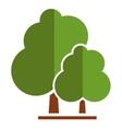 summer tree icon vector image