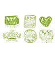 vegan summer menu green hand drawn badges set vector image vector image