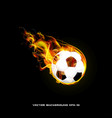 burning ball on a black background of stylish vector image vector image
