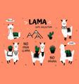 cartoon lama cute white alpaca and cactus clipart vector image vector image