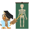 Owl teacher Anatomy Lesson the study of the human vector image vector image