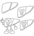 set of liver cartoon vector image vector image