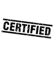square grunge black certified stamp vector image vector image